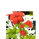 迷你世界野蔷薇在哪里 野蔷薇怎么获得 全球下载