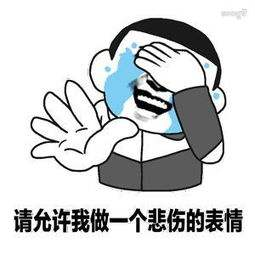 《网络用语》请允许我做一个悲伤的表情是什么意思?